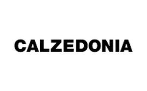 calzedonia negozio online